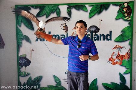 island cove handling eagle experience