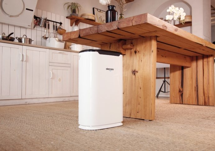 3 Things to Love About Okaysou AirMax8L Air Purifier